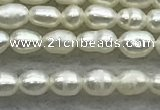 FWP154 14.5 inches 2mm - 3mm rice white freshwater pearl strands