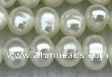 FWP19 15 inches 3mm - 4mm potato white freshwater pearl strands