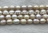 FWP206 15 inches 10mm - 11mm rice white freshwater pearl strands