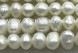 FWP51 15 inches 3mm - 4mm potato white freshwater pearl strands